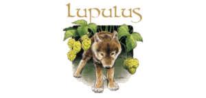 Lupulus-brasserie-france-bieres-groupe